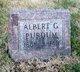 Profile photo:  Albert Gallatin Purdum