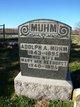 Profile photo:  Adolph A Muhm