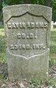 Gavin Adams