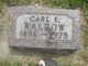 Carl E Waldrow