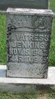 Louize Vatress Jenkins