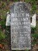 Riley N. Bryant
