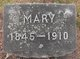 Profile photo:  Mary Bevier