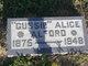"Profile photo:  Alice R. ""Gussie"" <I>Turner</I> Alford"