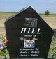 Merle A. <I>Otwell</I> Hill