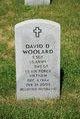 Profile photo:  David Dwain Woolard