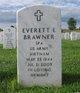 Everett Eugene Brawner