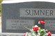 Profile photo:  Louie Mills Sumner