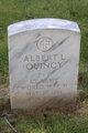 Profile photo:  Albert L. Quincy