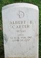 Profile photo:  Albert B. Carter