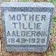 """Profile photo:  Tietje """"Tillie"""" <I>Van Vliet</I> Aalderink"""