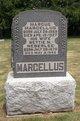 Marcus Marcellus