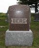 Albert N Berg