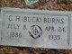 "Collie Hearne ""Buck"" Burns"