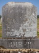 Profile photo:  Nancy Elizabeth <I>Porter</I> Busey