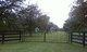 Asbell Family Cemetery