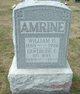 Pvt William Dexter Amrine