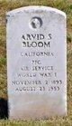 Profile photo:  Arvid S Bloom