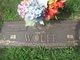 Iva I Wolfe