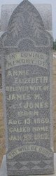 Annie Elizabeth <I>Wall</I> Jones