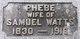 Phebe <I>Mallatt</I> Watts