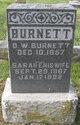 Sarah Elizabeth <I>Thomas</I> Burnett