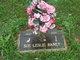 Profile photo:  Sue Leslie <I>Butcher</I> Baney