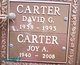 David Gordon Carter