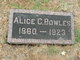Profile photo:  Alice Carrie <I>Selvey</I> Bowles