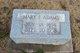 Mary Frances <I>Hutchison</I> Adams
