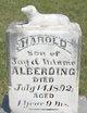 Harold Alberding