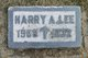 Harry A. Lee