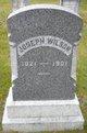 Profile photo:  Joseph Wilson