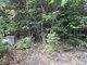 Kean Family Cemetery (Dunlap Creek)