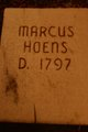 Marcus Hoehns