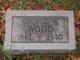 George W. Wood