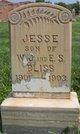 Profile photo:  Jesse Bliss