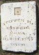 Stephen Madison Belding