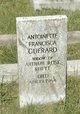 Antoinette Francisca <I>Guerard</I> Rhett