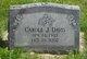 Profile photo:  Carole J. Davis