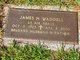 James H Waddell