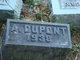 Profile photo:  A Dupont