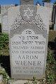 Profile photo:  Aaron Wiener