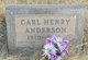 Profile photo:  Carl Henry Anderson