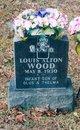 Louis Alton Wood