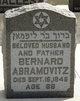 Bernard Abramovitz