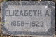 Elizabeth Ann <I>Gordon</I> Crooks