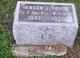 Anson J Tripp