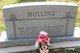 Orel B Hollins