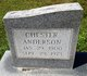 Chester Anderson